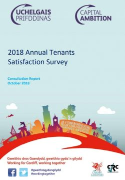 Cover image of the 2018 Satisfaction Survey report
